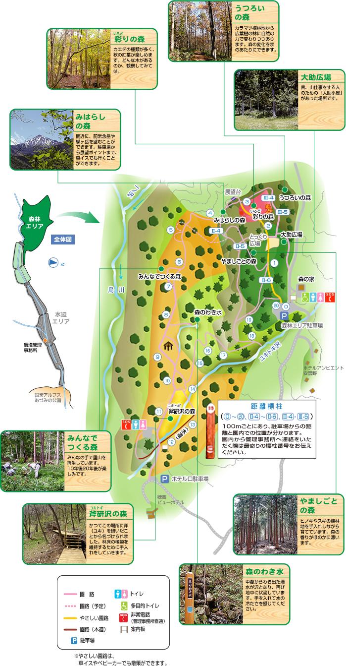 森林エリアマップ
