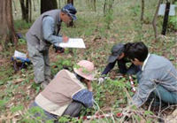 烏川渓谷緑地 植物班の活動の様子