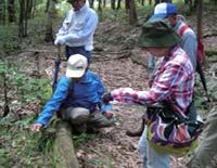 林床植物調査の様子