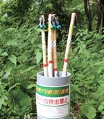 鈴の付いた杖の画像